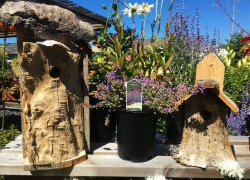 Locally made bird houses