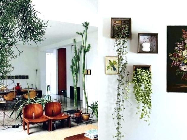 Top gardening trends of 2019 d avenue nursery - Living room plant ideas ...